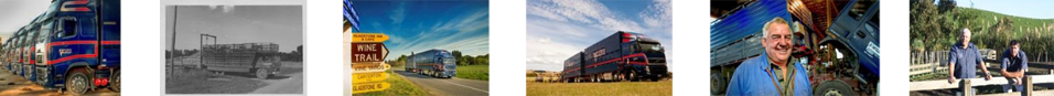 pinfold services image strip